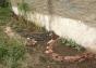parque sur sanvi canteros febrero 16 2014 - 02 crop small