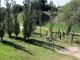 Taller de Permacultura Urbana - Bosque Comestible - 6 - small