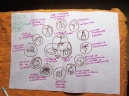 """Los 12 principios de diseño y las 3 Éticas de la Permacultura (David Holmgren). Esto se puede contemplar como el """"nucleo"""" del proceso de diseño con la Permacultura."""