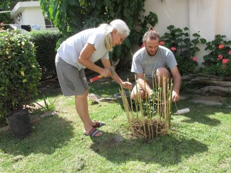 Armando la estructura de la reja de tacuara, un tipo de bambú nativo de argentina.