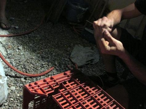 transición dadá site repair octubre 14 - small