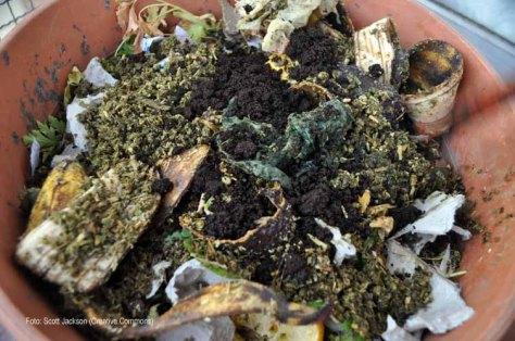 Algunos de los restos de café agregado al compost.