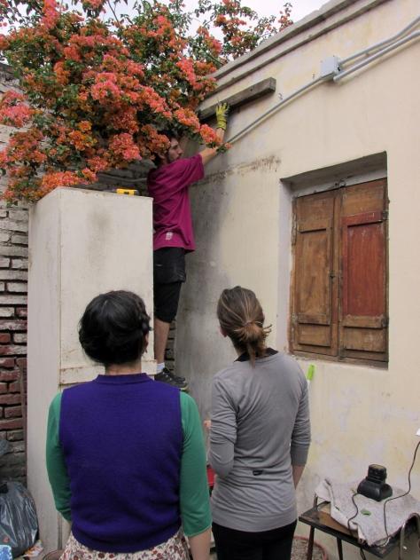 casona dada taller de permacultura urbana octubre 12 04 - small