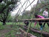 permacultura la quinta estructura noviembre 9 - 75 - small