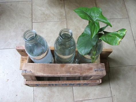 permacultura para deptos disenio 06