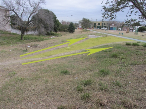 new-trees-Parque-Sur-San-Vicente-Julio-22-2014---70-paths-with-area