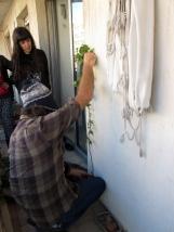 permacultura para deptos 1 junio 2014 - balcon de ale - 06 - small