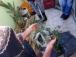 permacultura para deptos 1 junio 2014 - balcon de ale - 10 - small