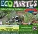 eco martes permacultura urbana web flyer