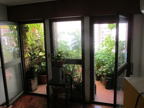 balcon casa del arbol 01