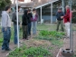 Investigando cultivos orgánicos en la QuintaEsencia - Villa Esquiu, Córdoba