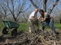 Juntando podas de arboles durante una jornada de mejoración del suelo para un proyecto de bosque comestible en la QuintaEsencia.