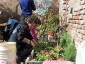 PDC permacultura en casona dada primer encuentro 12 de Julio 2014 - 24 - SMALL