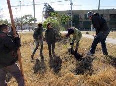 PDC segundo encuentro permacultura parque sur san vicente Julio 26 2014 - 09 - SMALL
