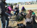 PDC segundo encuentro permacultura parque sur san vicente Julio 26 2014 - 14 - SMALL