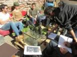 Estudiamos una variedad de plantas comestibles que forman parte del bosque comestible, concepto fundamental en la permacultura.