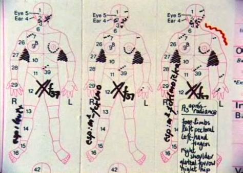 Desarrollo de alas y otras mutaciones corporales causadas por el Evento Desconocido Violento.